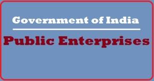 public enterprises