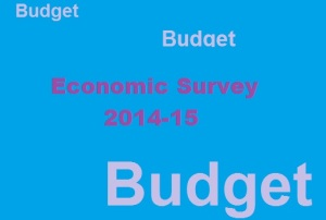 economic_survey