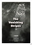 vanishing-stripes-2