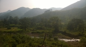 KutiaKondha habitat, Desughati. Pic: Subrat Kumar Nayak
