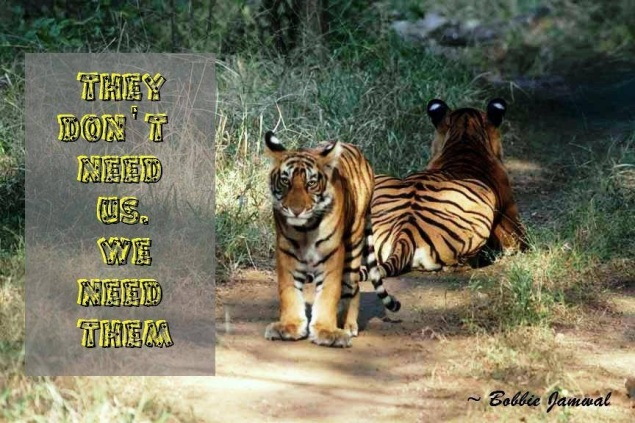 Tigers-they dont need us we need them