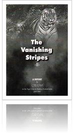 Vanishing stripes II