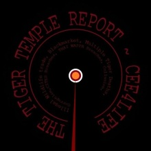 Tiger Temple Report 2