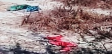 Clothes lay scattered in the fields near the alleged gang rape spot
